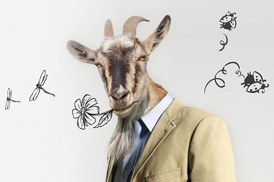 Прикольные, прикольные картинки про мужиков козлов